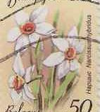 Bielorusia 008