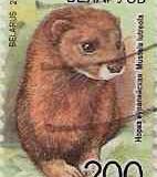 Bielorusia 009