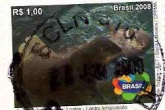 Brasil 011