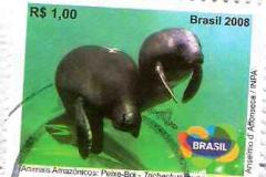 Brasil 012